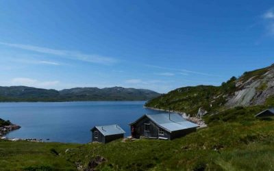 cabin rent nature statskog sirdal husky farm booking